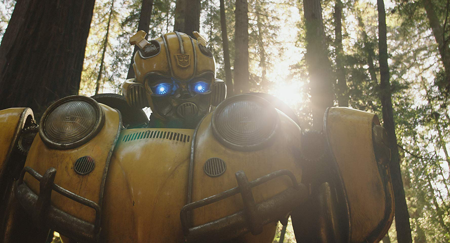 Bumblebee a hope for Transformers