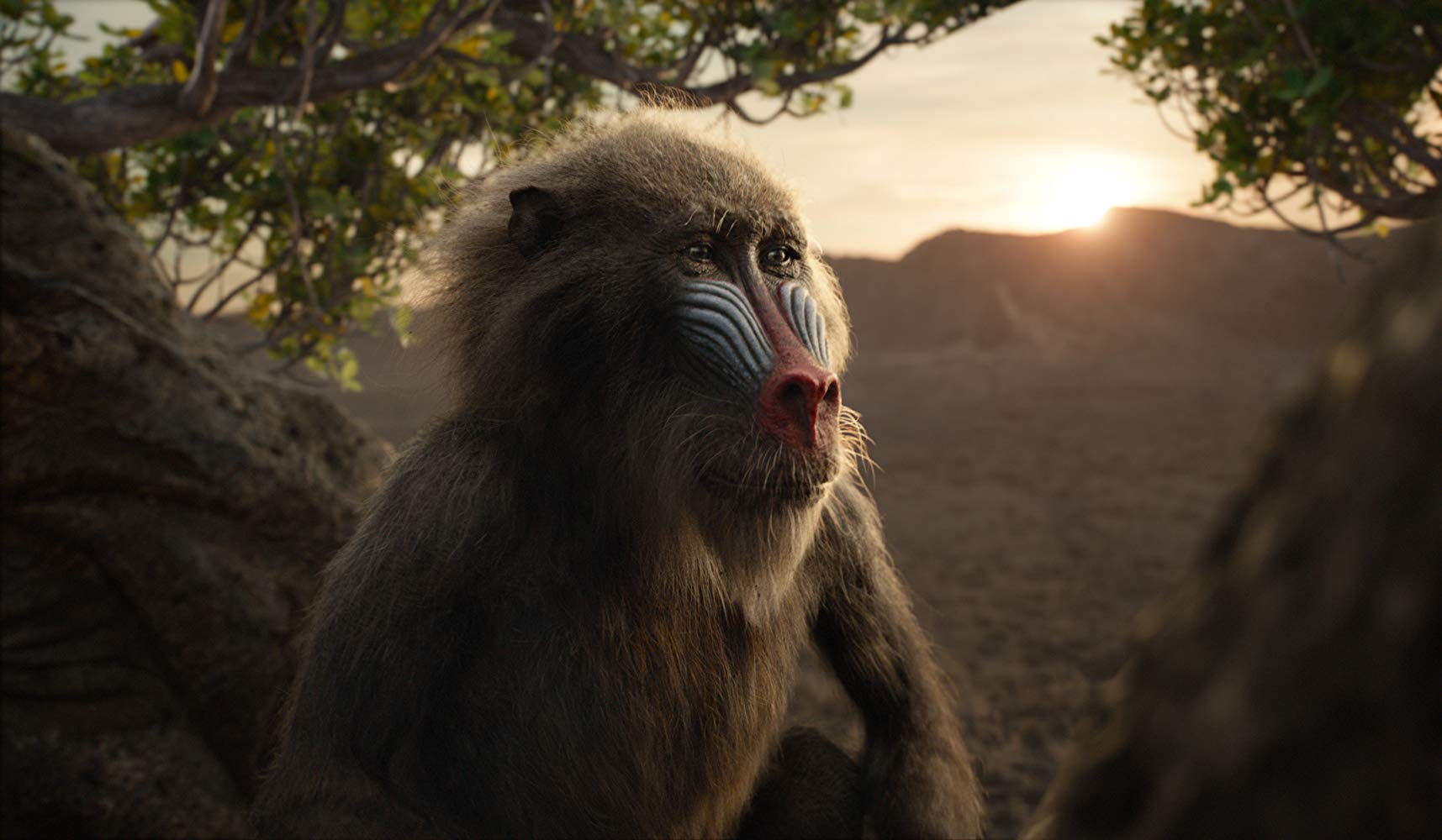 The Lion King John Kani as Rafiki